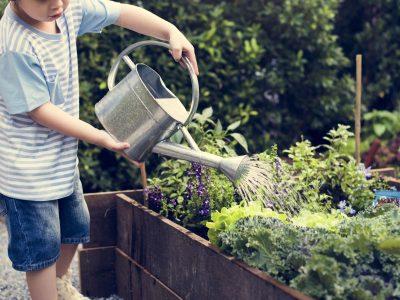 Záhrady na základných a stredných školách budú rozmanitejšie